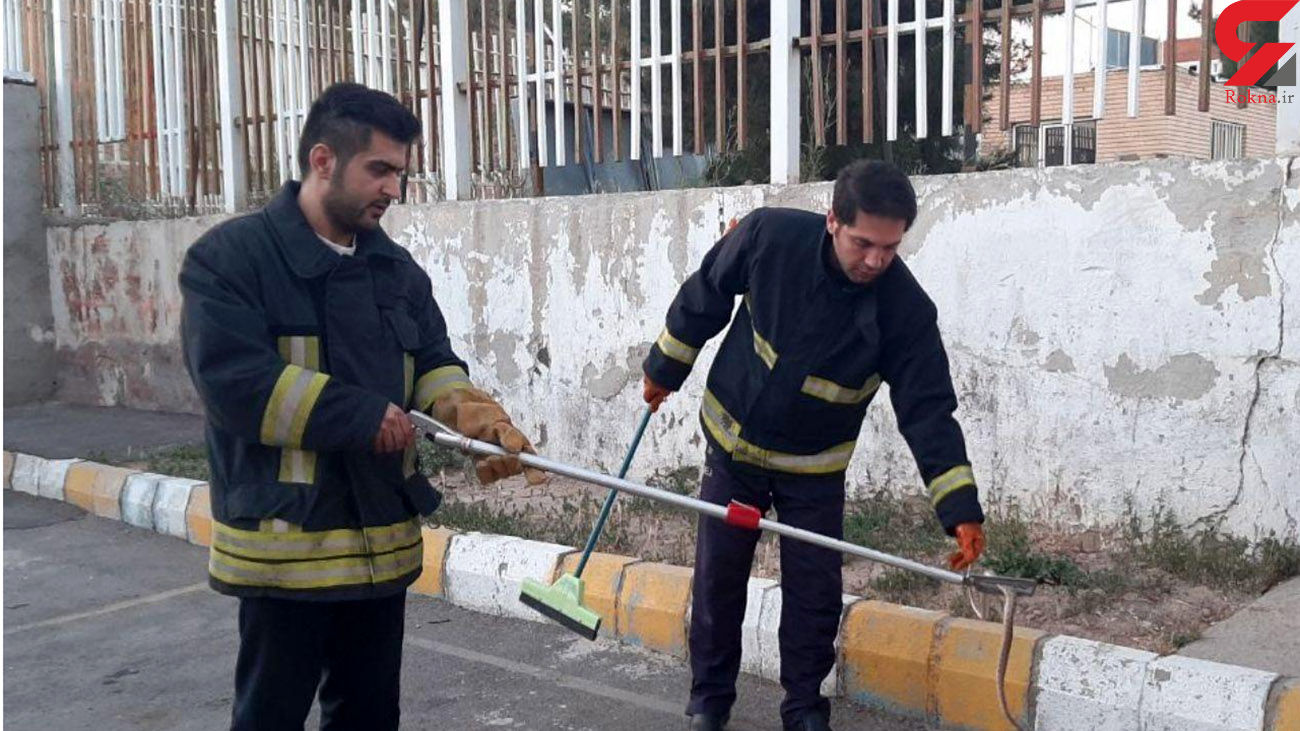زنده گیری یک حلقه مار در تبریز