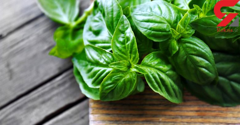 غذاهای گیاهی تصفیه کننده خون را بشناسید