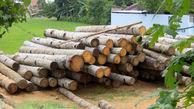 18 تن بار چوب قاچاق در مهاباد توقیف شد