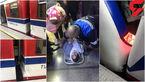 شکایت دختر جوان حادثه دیده در تصادف 2 قطار مترو تهران + عکس