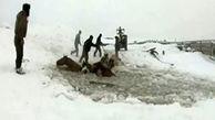 نجات یک گله اسب از داخل رودخانه یخ زده + فیلم