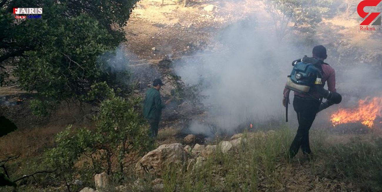 مهار آتش سوزی در 9 هکتار از مراتع بکر بخش تخت سلیمان تکاب