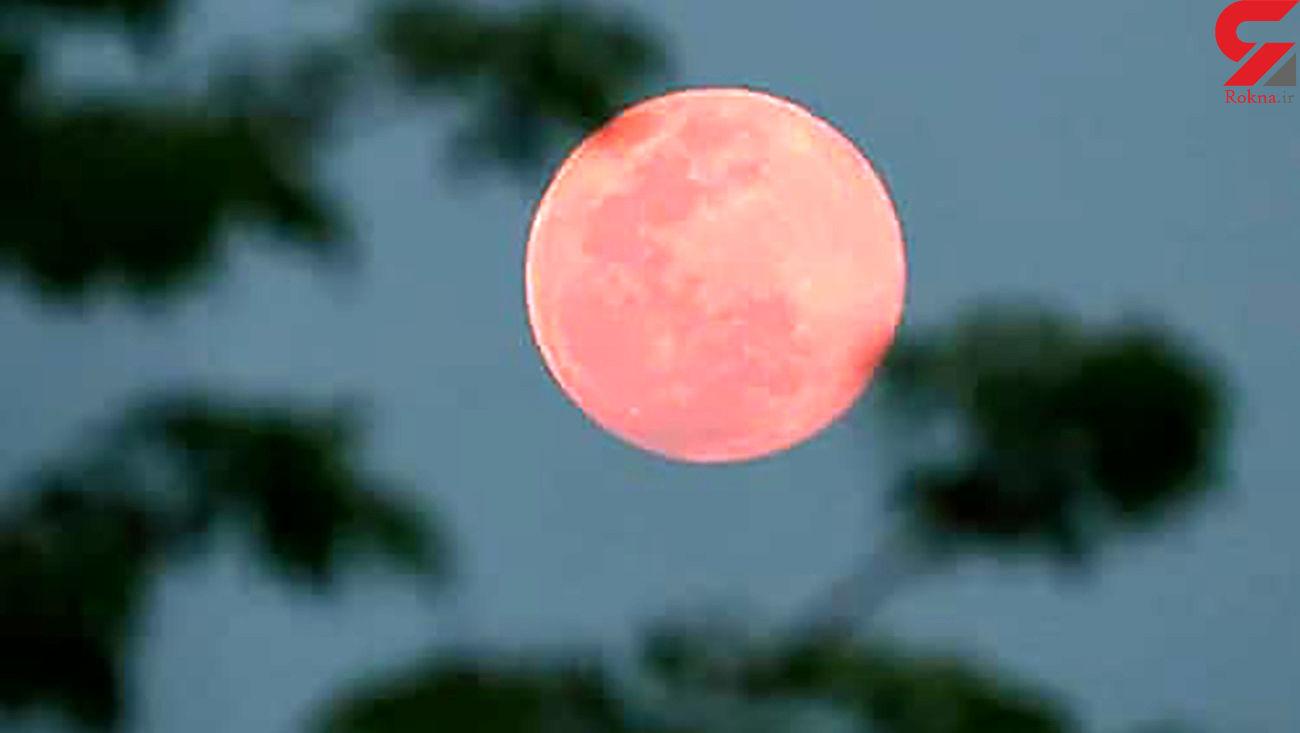 ماه صورتی را فردا مشاهده کنید + فیلم