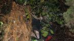 مرد 45 ساله اصفهانی در یک قدمی مرگ بود / او بالای درخت گیر افتاد