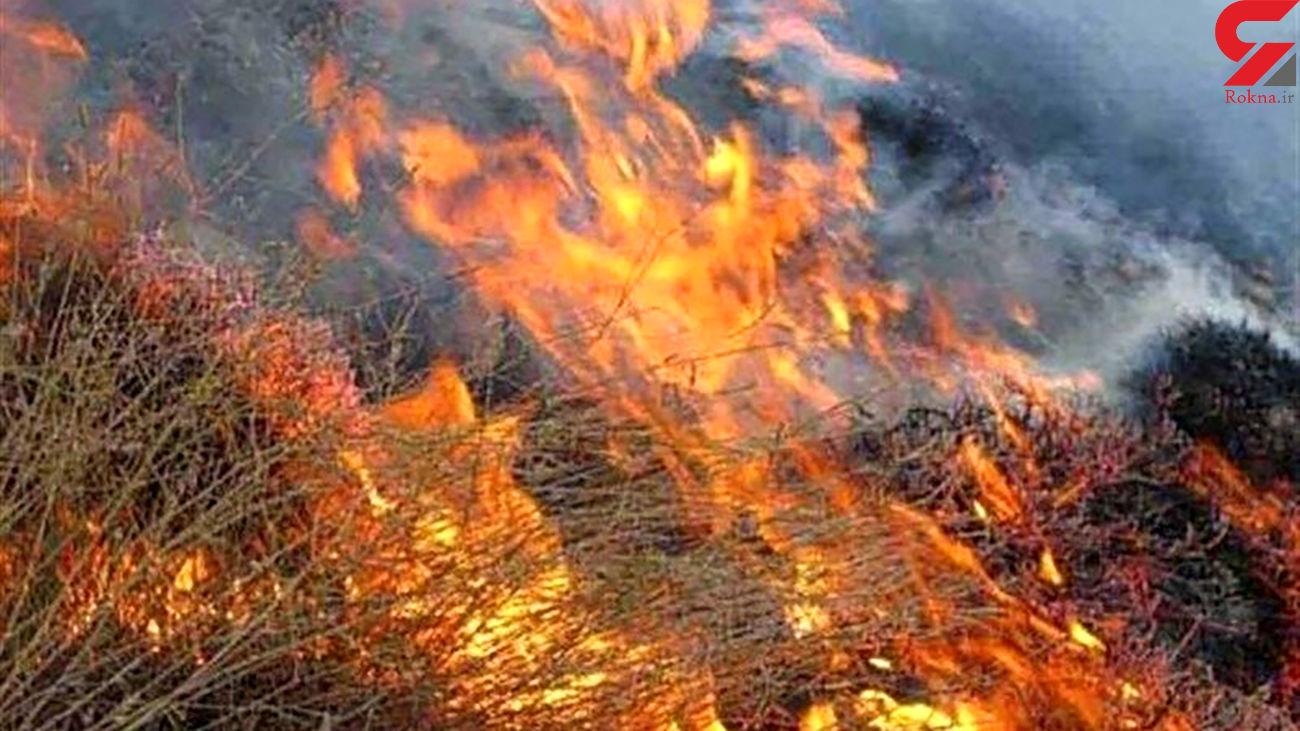 آتش سوزی خنج پس از 5 روز مهار شد
