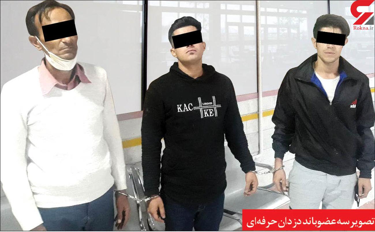اعتراف قصاب ماشین های ایرانی در مشهد / همه چیز را سلاخی می کردند + عکس