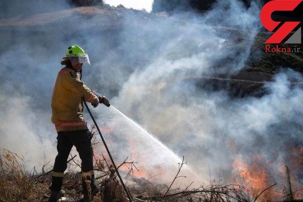 آتشسوزی در جنگلهای نیوزلند 3 هزار نفر را آواره کرد