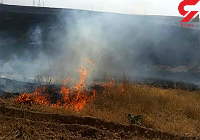 مهار آتشسوزی جنگلهای اردبیل