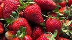 توت فرنگی دشمن التهاب روده