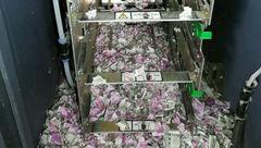 موش ها پول های دستگاه خودپرداز را خوردند + عکس