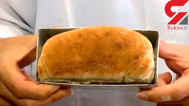 نانی که از آرد سوسک درست شده است ! +تصاویر