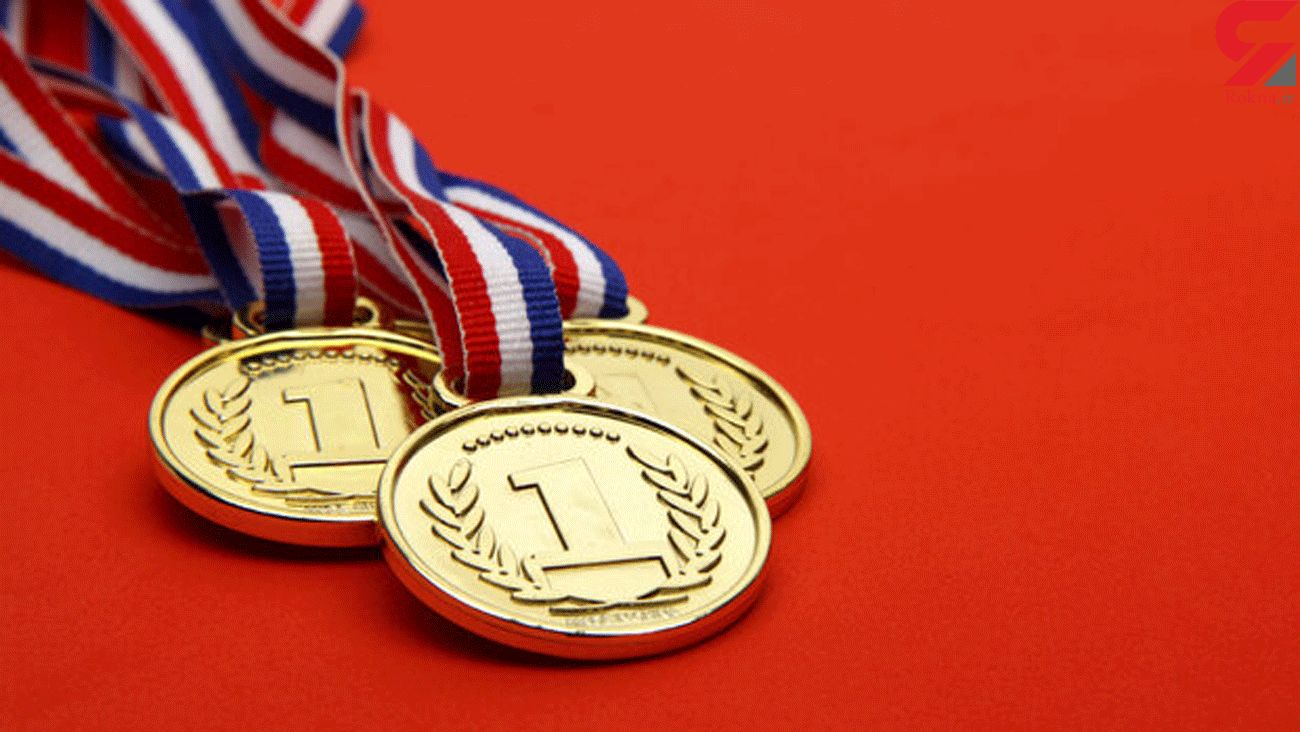 Iranian students win 8 medals at IOAA 2020
