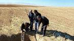 نجات یک گورکن که در چاه آبی در نهاوند کرده بود! + عکس