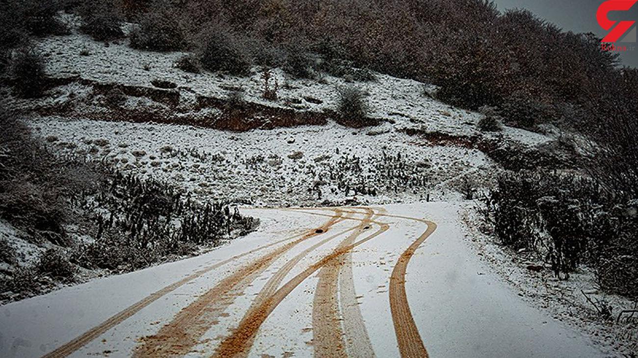 بارش برف و باران در 25 استان ایران + اسامی استان ها