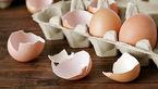 چرا نباید پوست تخم مرغ را دور ریخت