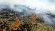 وقوع آتشسوزی در مراتع کنگاور