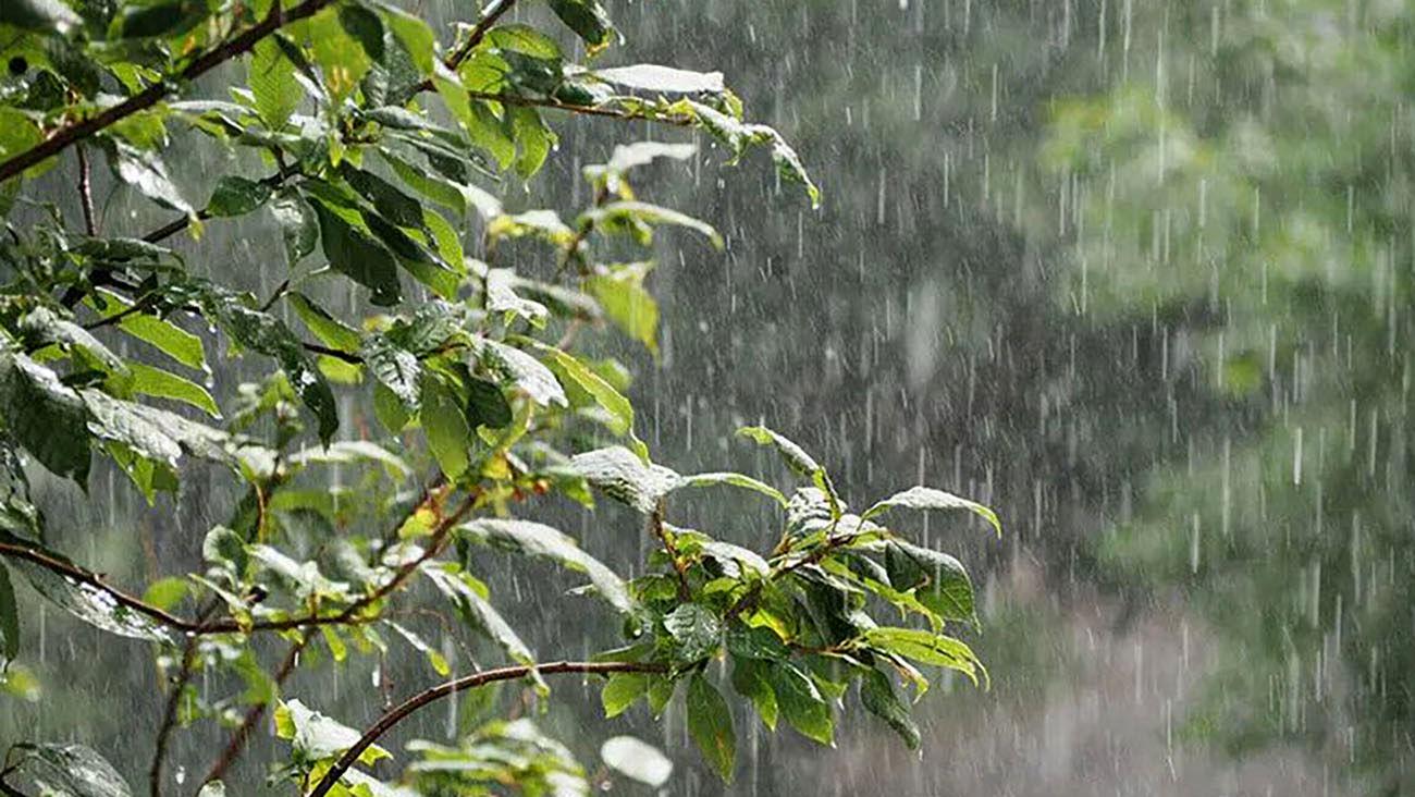 کاهش دمای هوا در سراسر کشور/ احتمال بارش باران در این استان ها