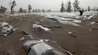 خسارت چند هزار میلیاردی به کشاورزان جنوب کرمان / اشک کشاورزان زیر کیسه های مدفون شده در طوفان شن + فیلم