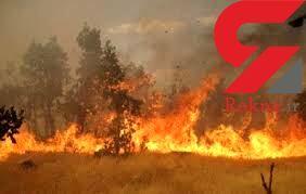 آتش ۱۰۰ هکتار از مراتع قم را سوزاند