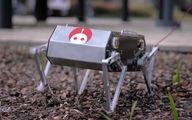 سگ رباتیکی که در هوا پشتک می زند تولید شد + عکس