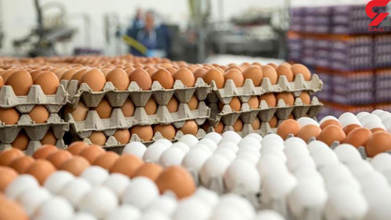 بازار مرغ آرام گرفت/ آشوب در بازار تخممرغ