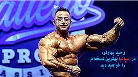 خوش اندام ترین بدنساز ایرانی در اسپانیا روی استیج می رود  / قول میدهم مهدی بهارلو در مسترالمپیای آماتوری مدال آور شود + عکس و فیلم