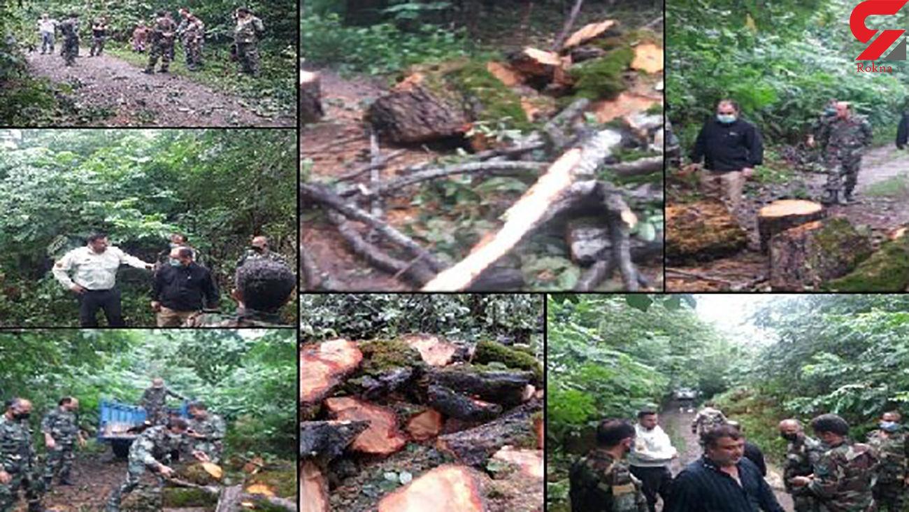 کتک کاری شدید جنگلبانان به دست قاچاقچیان چوب / در فومن رخ داد + عکس