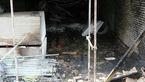 آتش سوزی گسترده در بلوار پیروزی + عکس