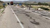 عکس های وحشتناک از لت و پار شدن شترها در تصادف با تریلی
