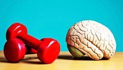 بیمه سلامت مغز با 7 ماده مغذی