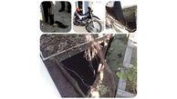 سقوط هولناک زن بابلسری در چاه باغ / ساعت 10 صبح امروز رخ داد + عکس