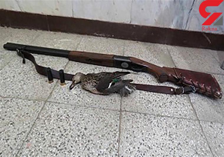 دستگیری شکارچی غیر مجاز بز کوهی در یزد