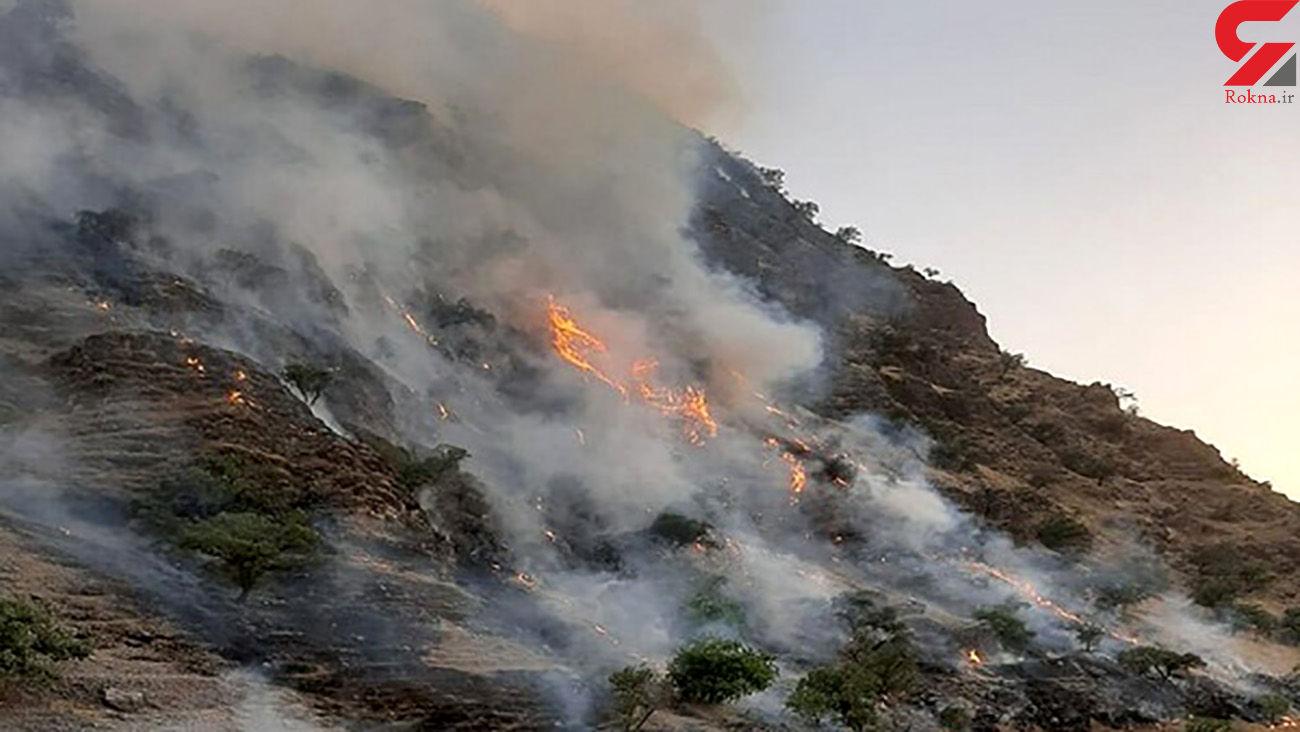 جزئیات آتشسوزی در تالاب سولدوز نقده