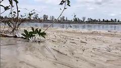خاکستر ناشی از احتراق زغالسنگ در نیروگاه کارولینای شمالی آبهای این منطقه را آلوده کرد+ تصاویر