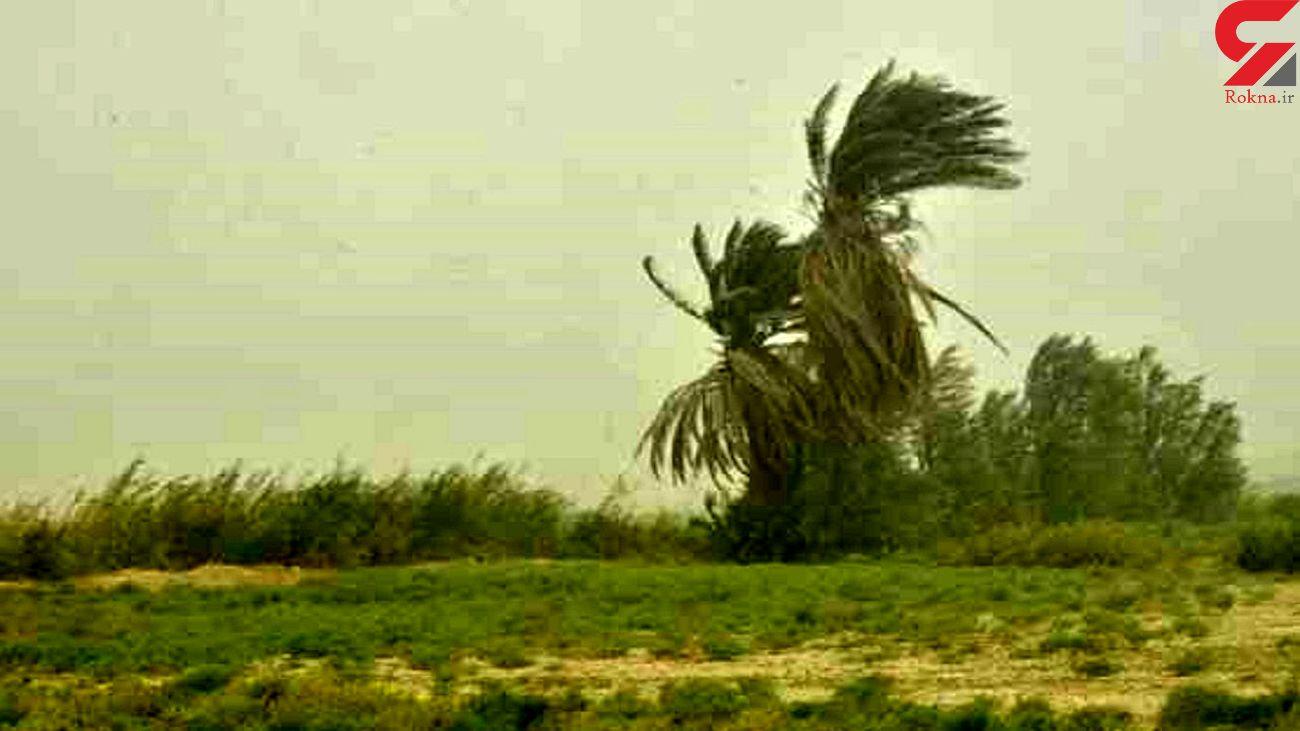 گرمای ۵۰ درجه در راه بوشهر/ خلیج فارس هم مواج میشود