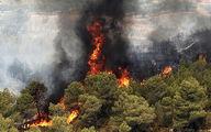 باز هم آتشسوزی این بار در  ارتفاعات منطقه «تنگ قیر» ایلام