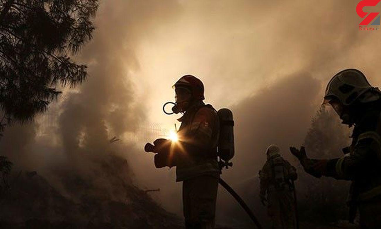 داوری : کمتر از 10درصد آتش سوزی های تهران عمدی بود + فیلم