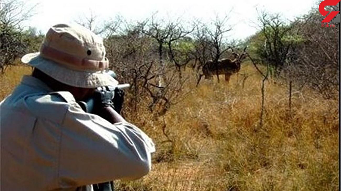 شکارچیان غیرمجاز پارک ملی گلستان دستگیر شدند