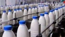 مأموریت رئیس مجلس به کمیسیون کشاورزی برای بررسی موضوع شیرهای آلوده