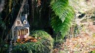 خانه آدم کوچولوها در جزیره ایرلند +عکس