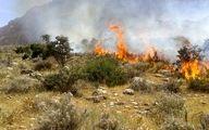 گردشگران جنگلهای گیلانغرب را به آتش کشیدند