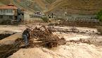 11 کشته و دو مفقود آخرین آمار تلفات سیل در 5 استان +فیلم و عکس