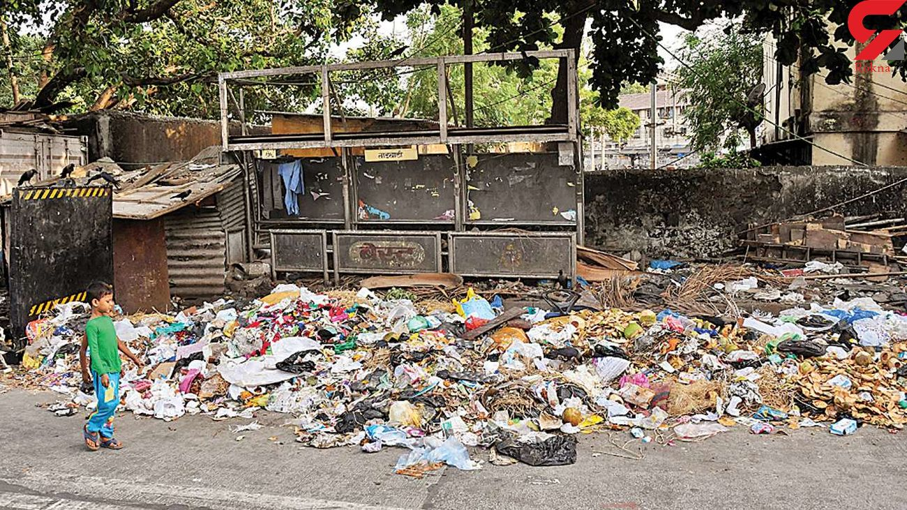کرونا سیلی محکم محیط زیست به صورت بشریت است /  نبود آموزش شهروندی در زمینه تفکیک زباله