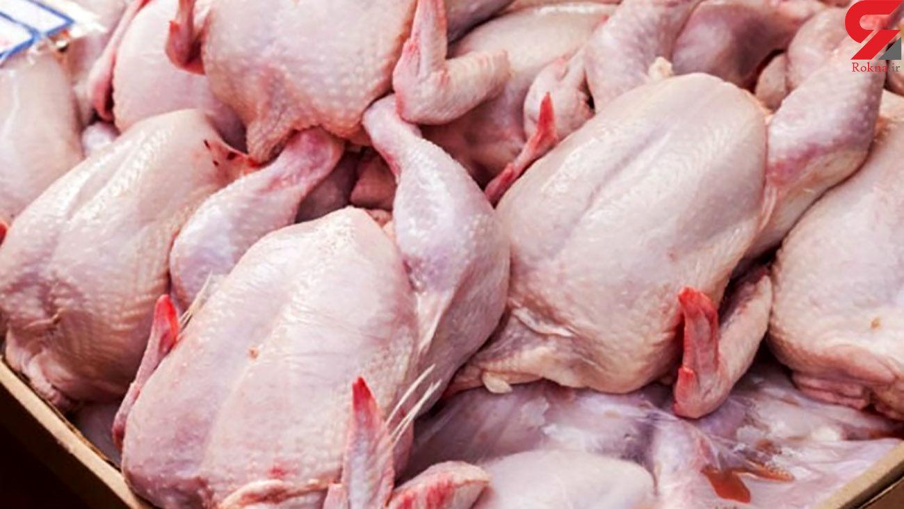 مرغ دوباره گران می شود + جزئیات