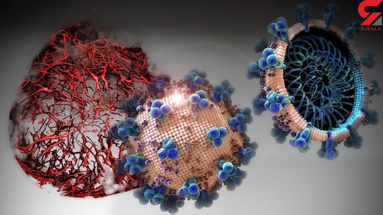 کشف اصلیترین دلیل مرگبار شدن ویروس کرونا