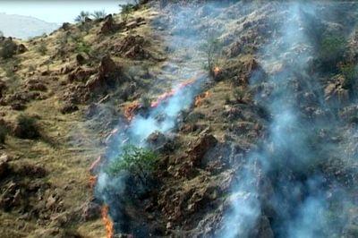 مراتع جنگلی قاضی خان آتش گرفت / در ایلام اتفاق افتاد + عکس