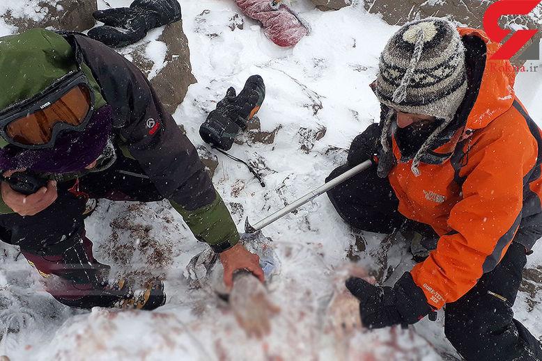 عکس های دردناک از خارج کردن اجساد مسافران هواپیمای تهران-یاسوج از زیر برف 16+