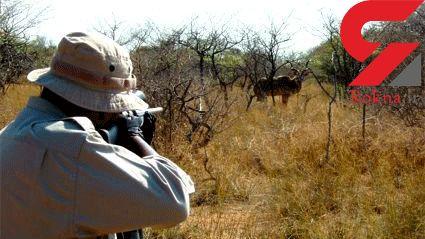 درگیری مسلحانه شکارچیان با ماموران محیط زیست / یک مامور به بیمارستان منتقل شد