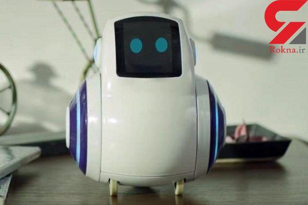 این ربات خانگی با انسان تعامل برقرار می کند