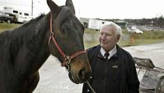 این اسب با لگد زدن به صاحب خود مرد نابینا را درمان کرد +عکس